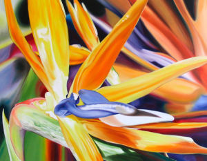 Birds in Paradise by James Knowles