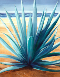 Agave el la Playa by James Knowles
