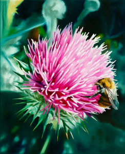 Grey Lady Thistle and Bee by James Knowles
