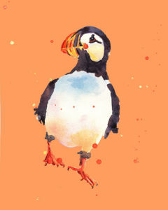 Puffin Daredevil by Alison Fennell