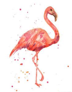 Flamingo Showgirl by Alison Fennell