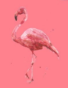 Flamingo Flamenco by Alison Fennell
