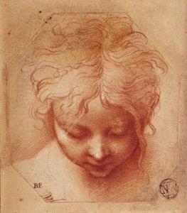Study of a Head by Parmigianino Francesco Mazzola