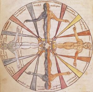 Wheel of the seasons and months from 'De Natura Rerum' by French School