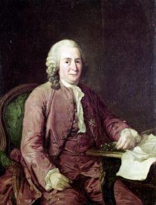 Portrait of Carl von Linnaeus by Alexander Roslin