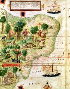 Brazil from the 'Miller Atlas' by Pedro Reinel c.1519 by Portuguese School