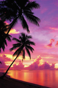 Tahitian Sunset by Maxi