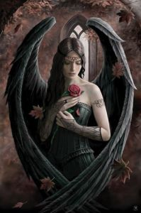 Angel Rose by Anne Stokes