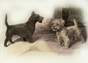 Scotties (Restrike Etching) by Harry Dixon
