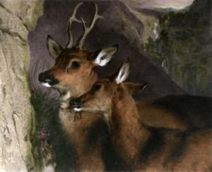 The Honeymoon (Deer) (Restrike Etching) by Sir Edwin Henry Landseer