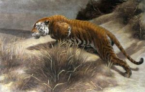 Startled (Tiger) (Restrike Etching) by Herbert Thomas Dicksee