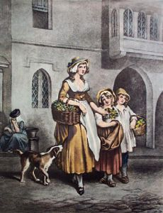 Primrose (Restrike Etching) by Francis Wheatley