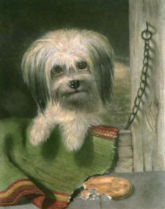 Impudence (Dog) (Restrike Etching) by Sir Edwin Henry Landseer