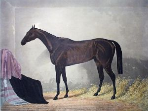 Pero Gomez (Restrike Etching) by Anonymous