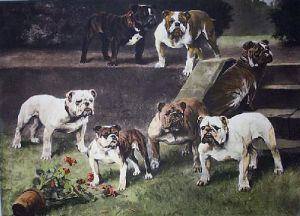Bullbitches of the 20th Century (Restrike Etching) by Arthur Wardle