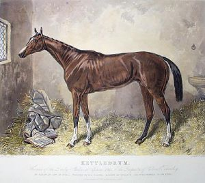 Kettledrum (Restrike Etching) by Harry Hall