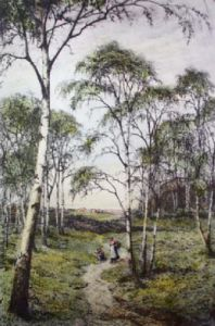 Primrose Wood, The (Restrike Etching) by Frederick Albert Slocombe
