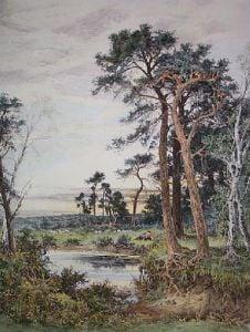 Amongst the Surrey Pine Trees (Restrike Etching) by Benjamin Williams Leader
