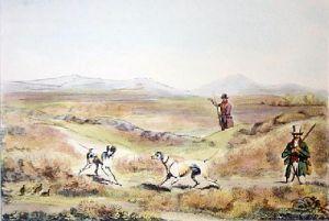 Grouse (Restrike Etching) by Henry Alken