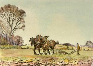 Ploughing - Plate 3 (Restrike Etching) by Graham Clilverd
