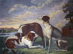 Sporting Dogs (Restrike Etching) by Abraham Hondus