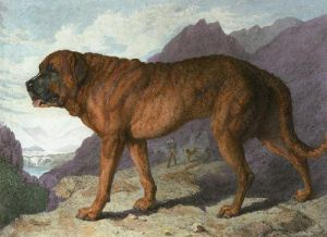 Alpine Mastiff (Restrike Etching) by Sir Edwin Henry Landseer