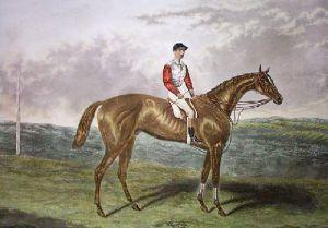 Sir Hugo (Restrike Etching) by Edwin H. Hunt