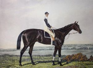 Ayrshire (Restrike Etching) by Sidney R. Wombill