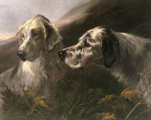 Setters at Work (Restrike Etching) by Heywood Hardy