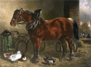 Dray Horse (Restrike Etching) by John Frederick Herring