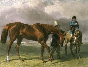 Racehorse (Restrike Etching) by John Frederick Herring