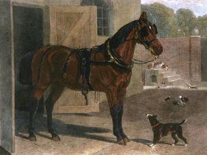 Braugham Horse (Restrike Etching) by John Frederick Herring