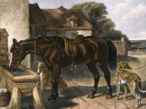 Farmer's Hack (Restrike Etching) by John Frederick Herring