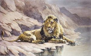Monarch of the Desert (Restrike Etching) by Herbert Thomas Dicksee