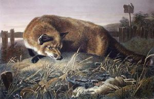 Not Caught Yet (Restrike Etching) by Sir Edwin Henry Landseer