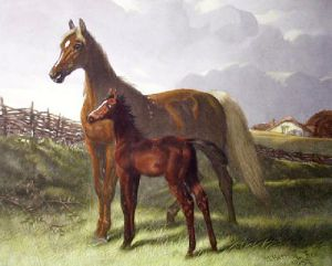 Thoroughbreds (Mezzo) (Restrike Etching) by John Frederick Herring