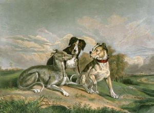The Boasting Hound (Restrike Etching) by Sir Edwin Henry Landseer