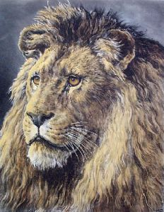 African Monarch, An (Lion) (Restrike Etching) by Herbert Thomas Dicksee