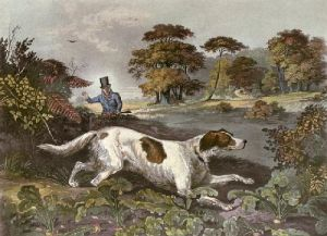 October (Dog) (Restrike Etching) by Francis Calcraft Turner