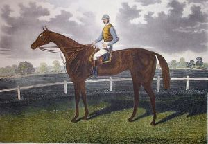 Shotover (Restrike Etching) by Anonymous
