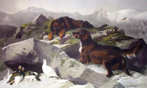 Ptarmigan Hill (Restrike Etching) by Sir Edwin Henry Landseer