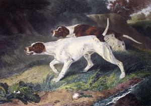 To Ho, To Ho (Restrike Etching) by Sir Edwin Henry Landseer