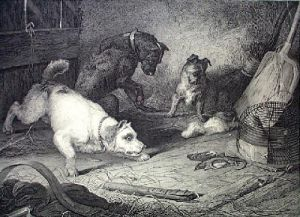 Rat Catching (Restrike Etching) by Sir Edwin Henry Landseer