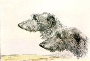 Wolfhounds Heads (Restrike Etching) by Anonymous