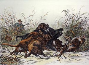Boar Hunting ! (Restrike Etching) by J. Greenaway
