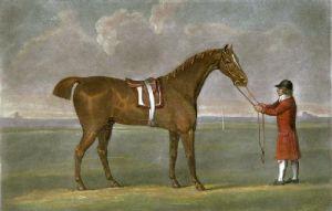 Buzzard (Restrike Etching) by John Sartorius