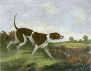 Whisker (A Pointer) (Restrike Etching) by Francis Calcraft Turner