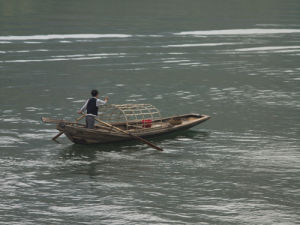 Rowing on the Yangtze river, three Gorges, near Yichang, Sichuan province by Assaf Frank