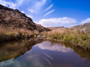 Burbage Brook, close-up, England by Assaf Frank