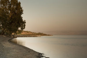 Beach against sky, Sea of Galilee at dusk, Israel by Assaf Frank
